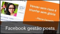 Facebook gestão posts