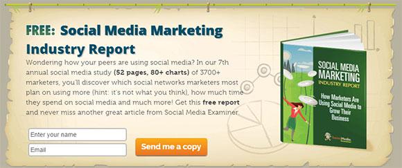 Lead magnet relatório de Social Media Examiner