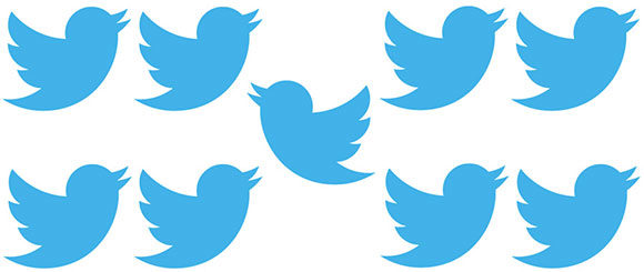 twitter-passaros