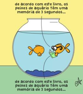 Memoria peixe aquario
